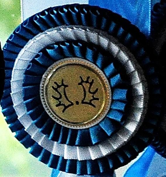 Champ2021-Aufm