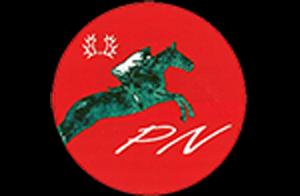 PN-Logo